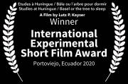 The Winner is: INTERNATIONAL EXPERIMENTAL SHORT FILM AWARD: Studies at Huningue / Basel or the tree to sleep
